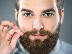 Обзор бороды шотландки: фото как выглядит и как сделать