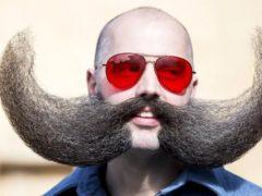 Самые длинные  усы и рекордсмены мира