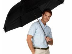 Самые известные брэнды мужских зонтов