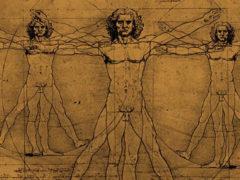 Что такое крайняя плоть у мужчин?