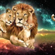 Какие мужчины нравятся женщинам львам и кого они выбирают?