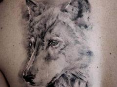 Тату волк: фото с изображением волка для мужчин